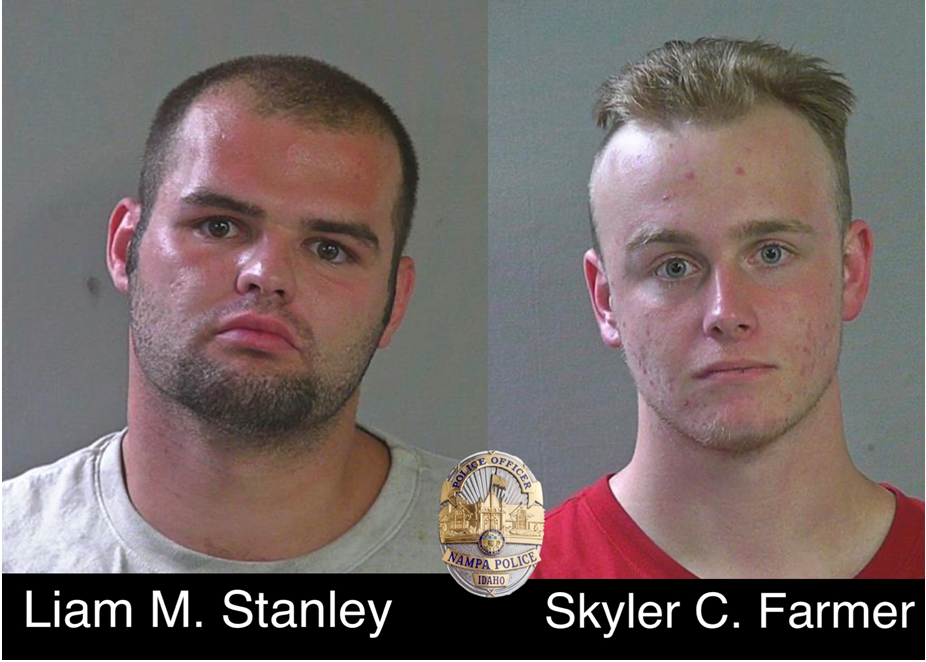 Burglary suspects