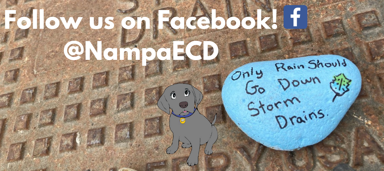 Follow us on FacebookNampaECD