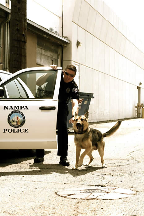 Photo of K-9 Police Service Dog and Handler